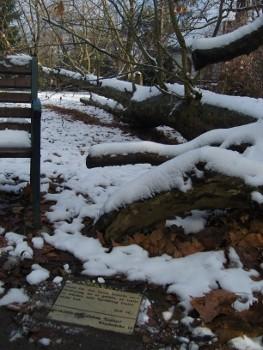 Auf dem alten Friedhof - small